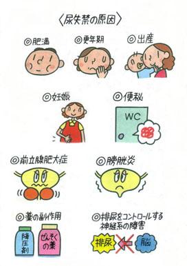 尿漏れ頻尿の原因