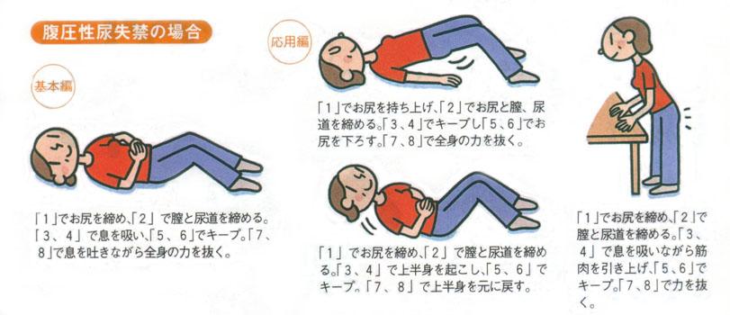 尿漏れ頻尿に骨盤底筋体操