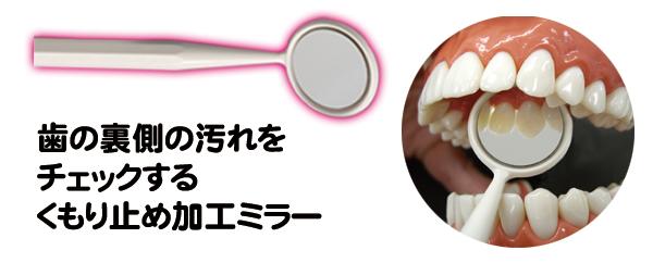 歯石屋くん